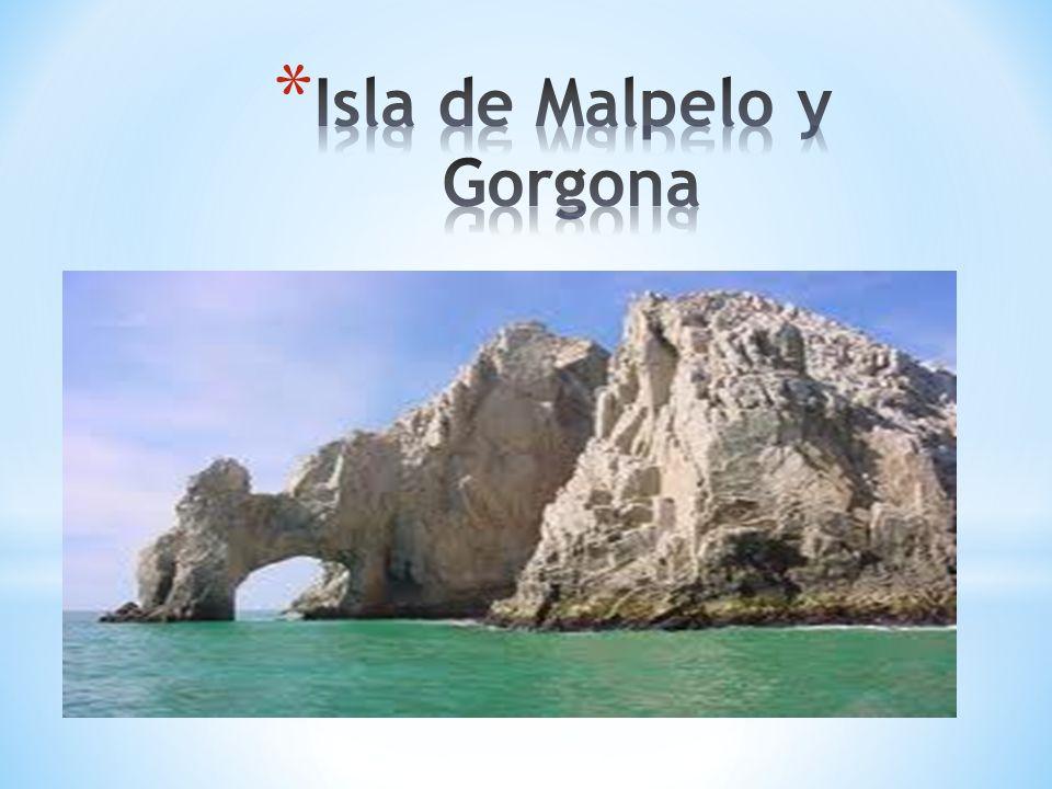 Isla de Malpelo y Gorgona