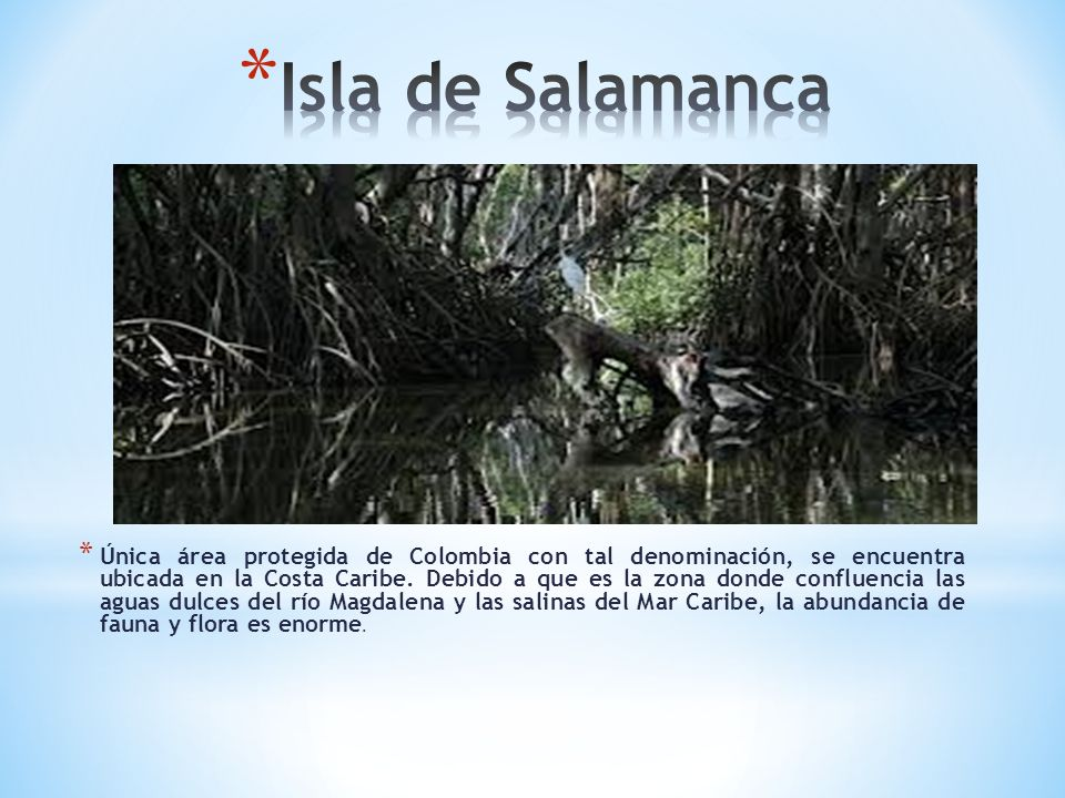 Isla de Salamanca