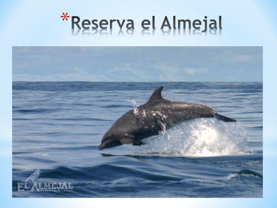 Reserva el Almejal