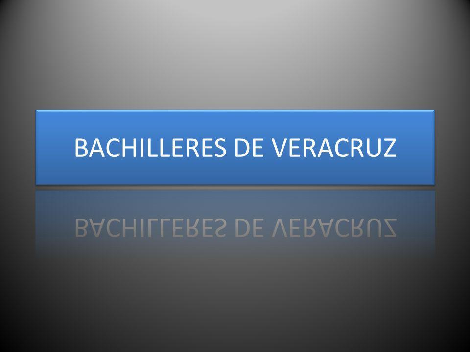 BACHILLERES DE VERACRUZ