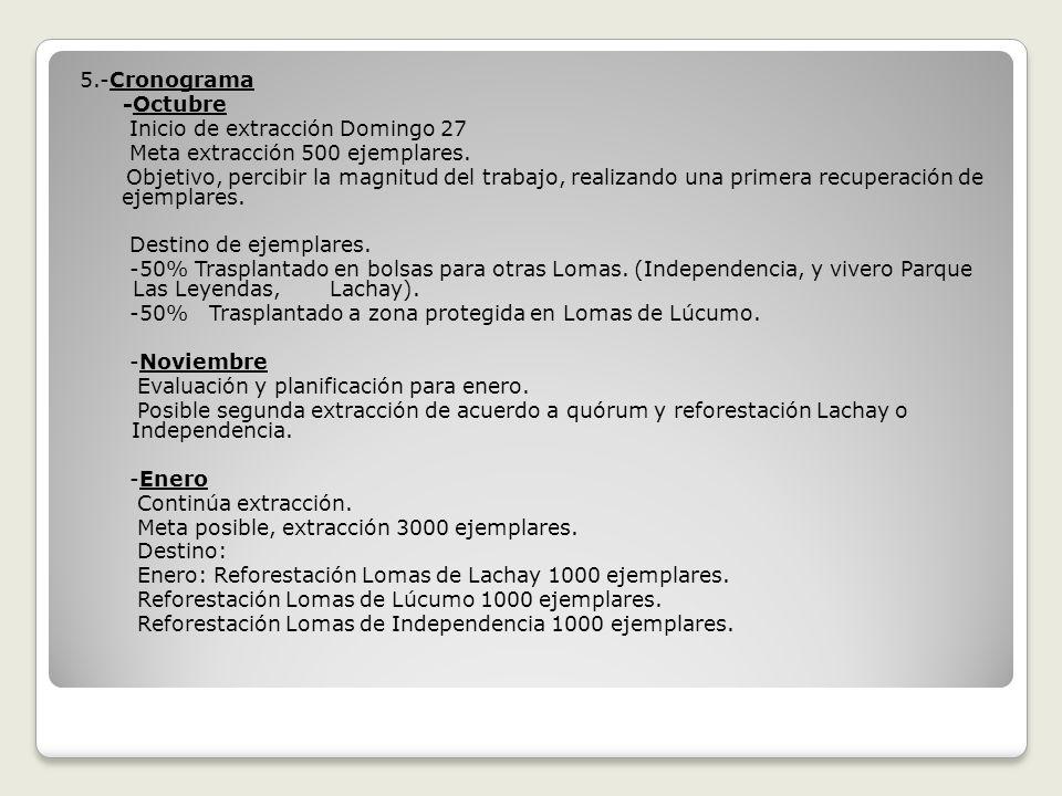 5.-Cronograma -Octubre. Inicio de extracción Domingo 27. Meta extracción 500 ejemplares.