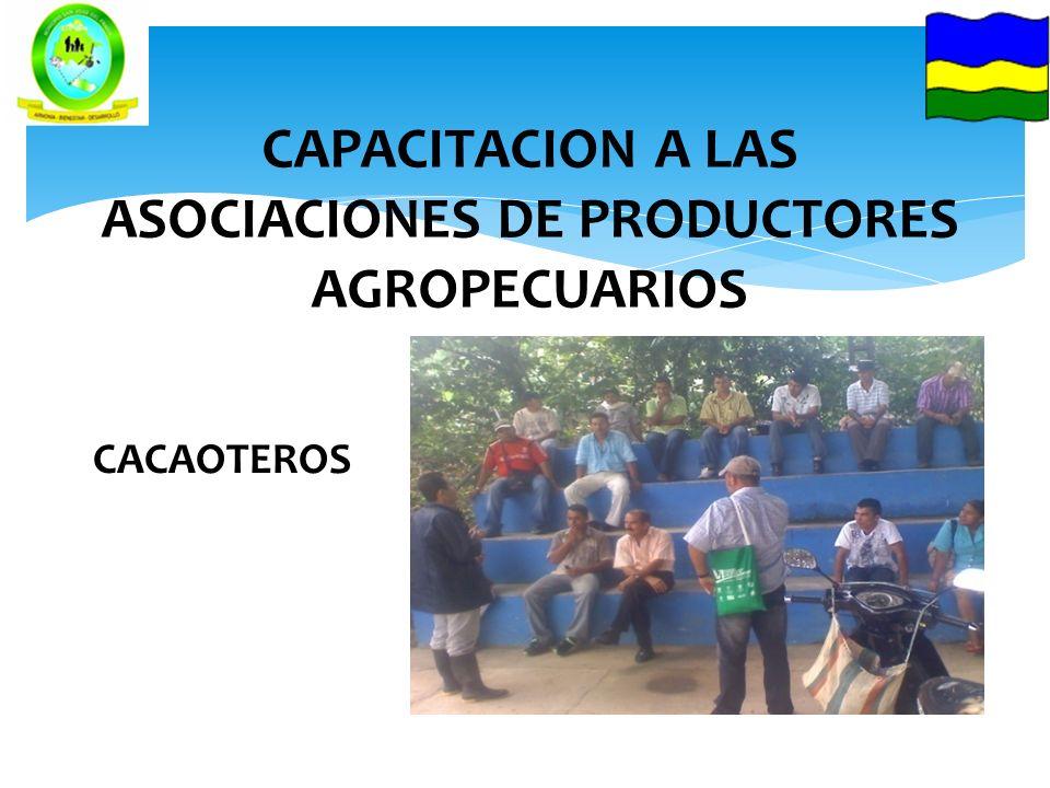 CAPACITACION A LAS ASOCIACIONES DE PRODUCTORES AGROPECUARIOS