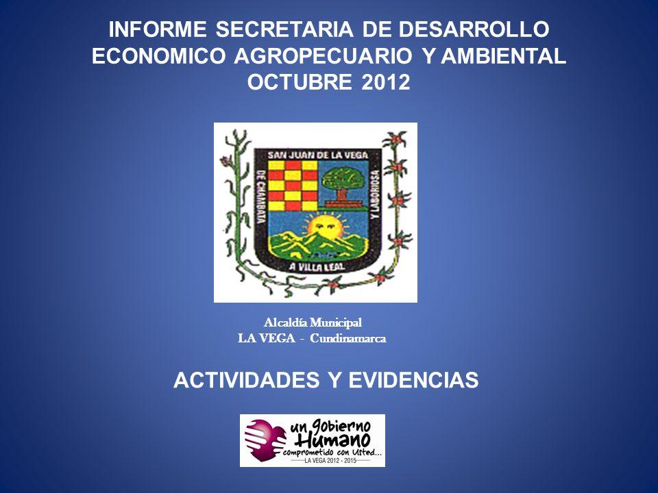 ACTIVIDADES Y EVIDENCIAS