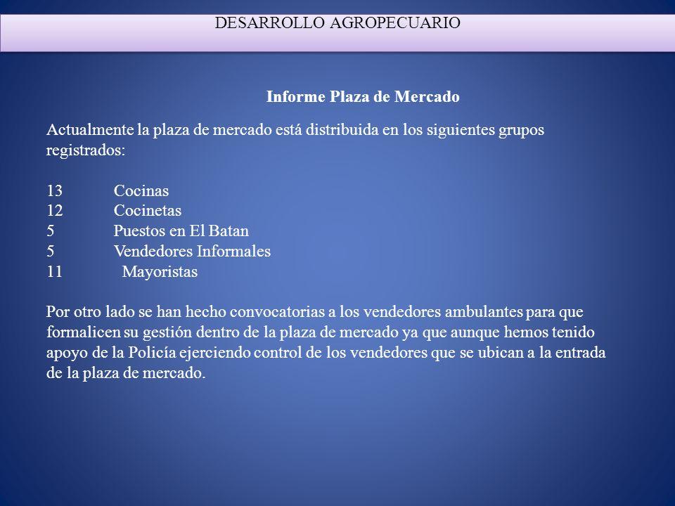 Informe Plaza de Mercado