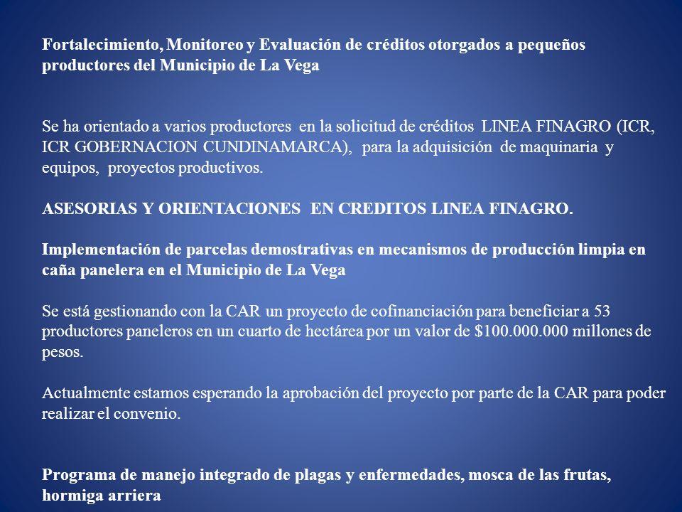 Fortalecimiento, Monitoreo y Evaluación de créditos otorgados a pequeños productores del Municipio de La Vega