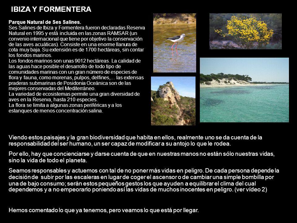 IBIZA Y FORMENTERA Parque Natural de Ses Salines.