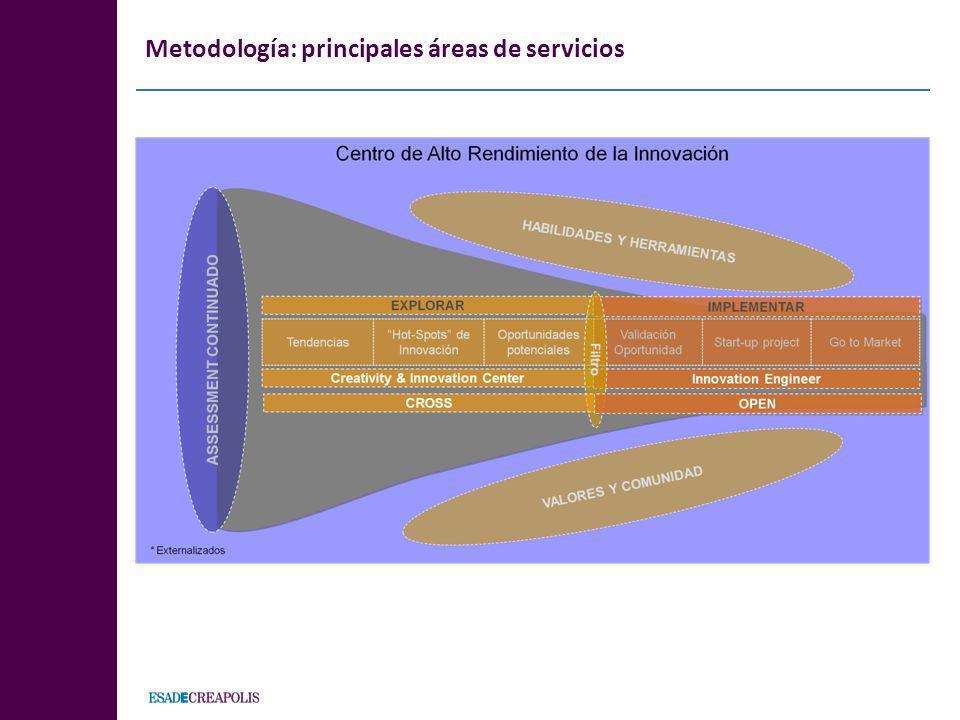 Metodología: principales áreas de servicios