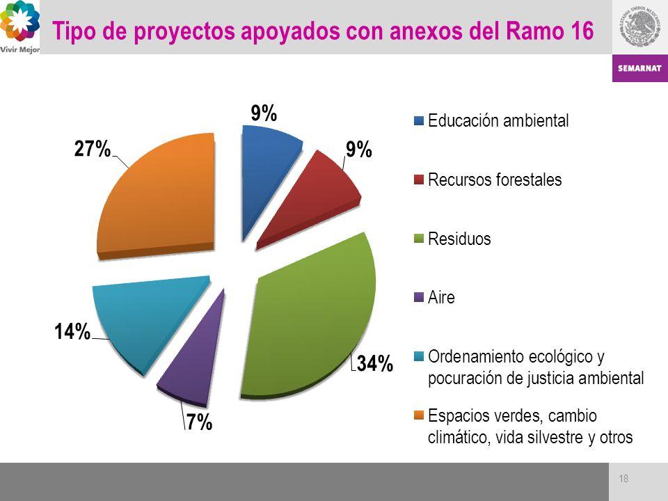 Tipo de proyectos apoyados con anexos del Ramo 16