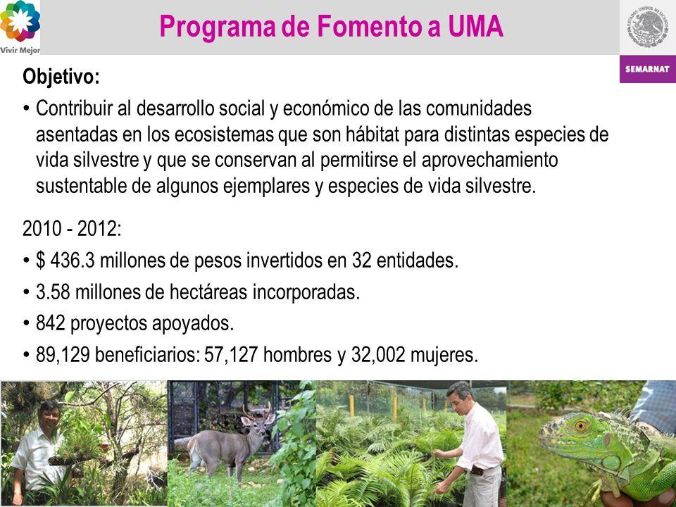 Programa de Fomento a UMA