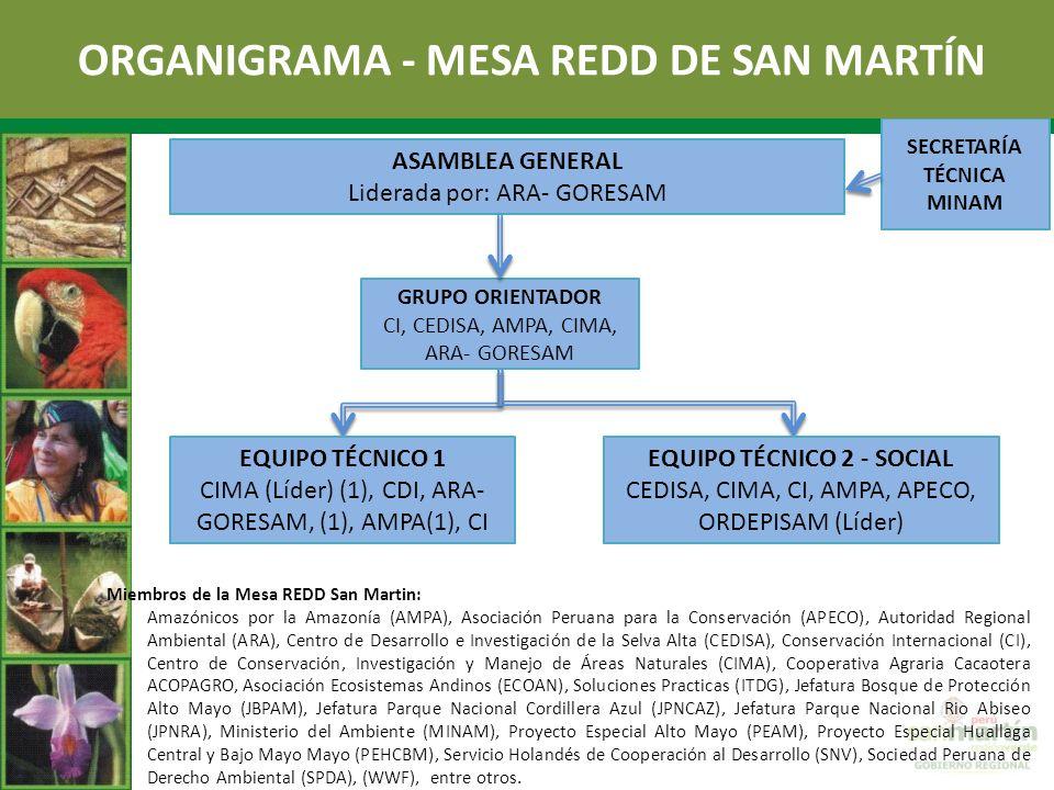 ORGANIGRAMA - MESA REDD DE SAN MARTÍN