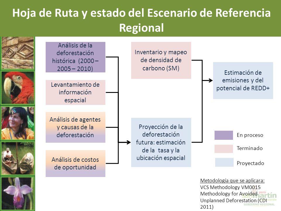 Hoja de Ruta y estado del Escenario de Referencia Regional
