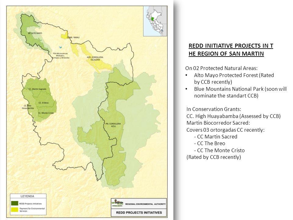 REDD INITIATIVE PROJECTS IN THE REGION OF SAN MARTIN
