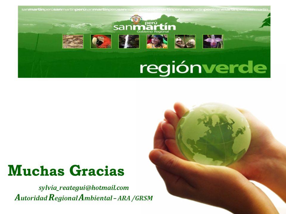 Autoridad Regional Ambiental – ARA /GRSM