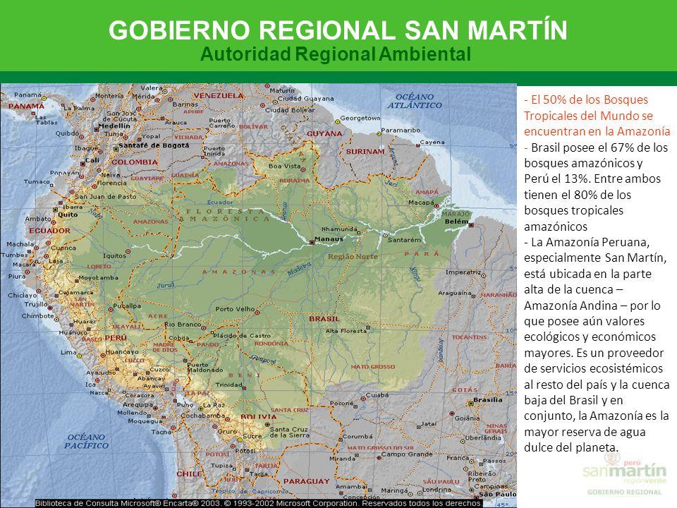 - El 50% de los Bosques Tropicales del Mundo se encuentran en la Amazonía - Brasil posee el 67% de los bosques amazónicos y Perú el 13%.