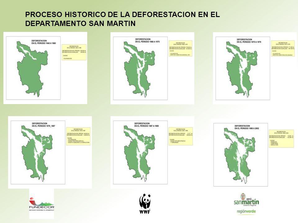 PROCESO HISTORICO DE LA DEFORESTACION EN EL DEPARTAMENTO SAN MARTIN
