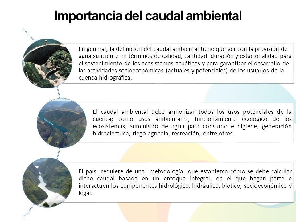 Importancia del caudal ambiental