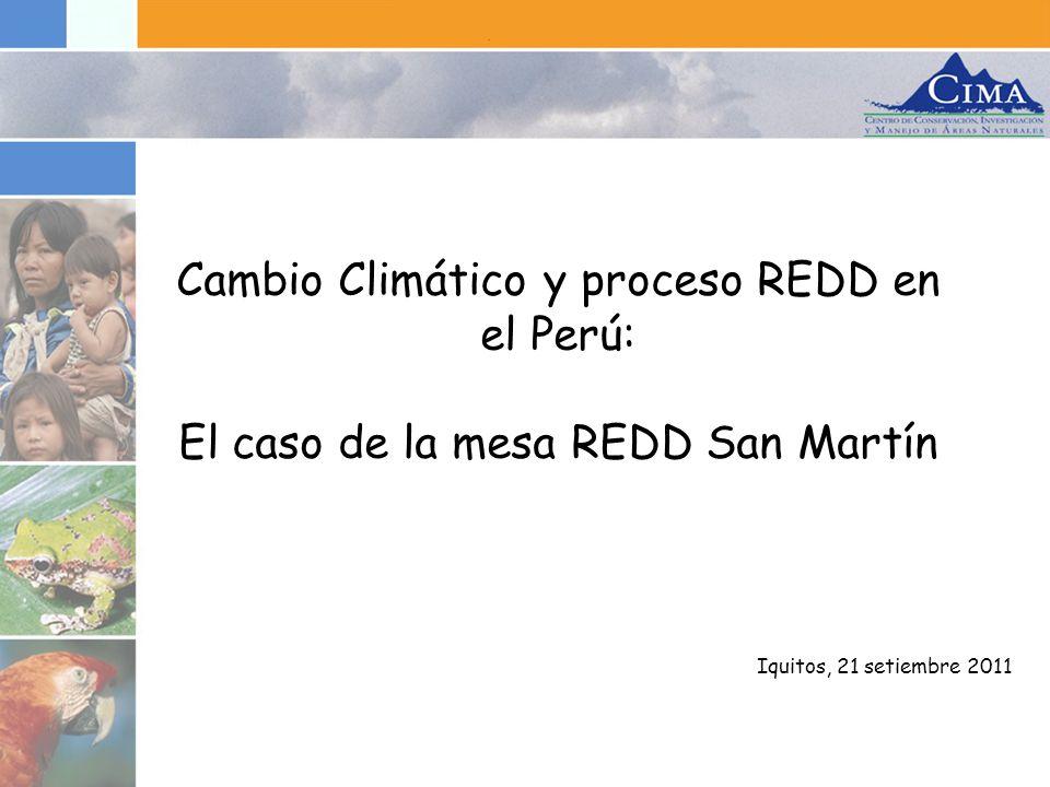 Cambio Climático y proceso REDD en el Perú: El caso de la mesa REDD San Martín
