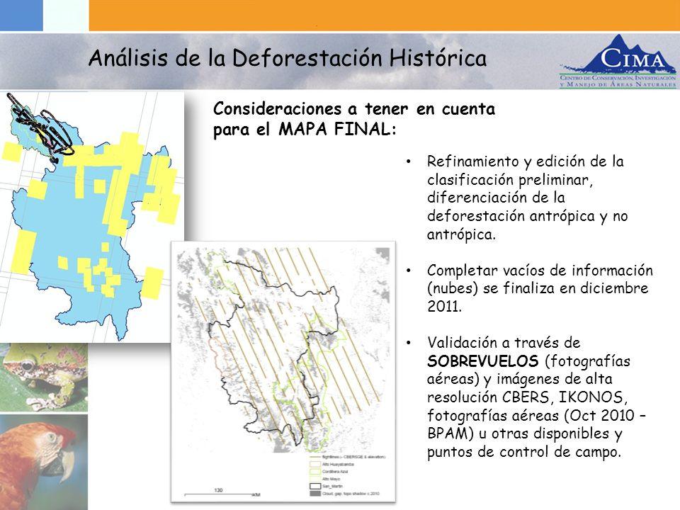 Análisis de la Deforestación Histórica