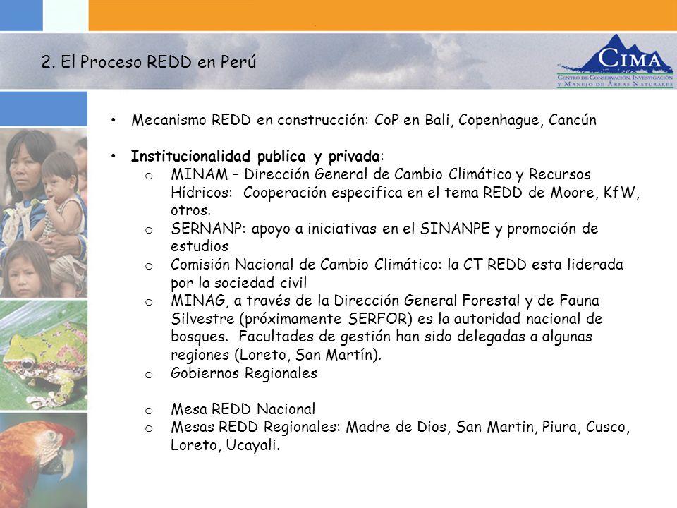 2. El Proceso REDD en Perú Mecanismo REDD en construcción: CoP en Bali, Copenhague, Cancún. Institucionalidad publica y privada: