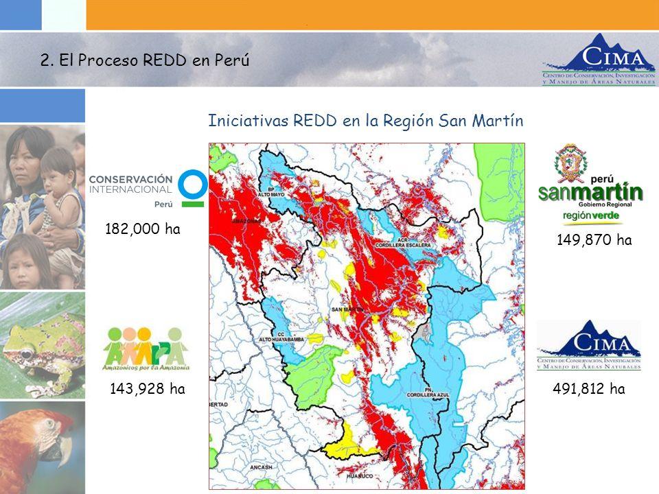Iniciativas REDD en la Región San Martín