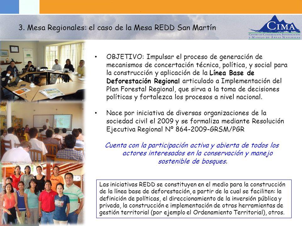 3. Mesa Regionales: el caso de la Mesa REDD San Martín
