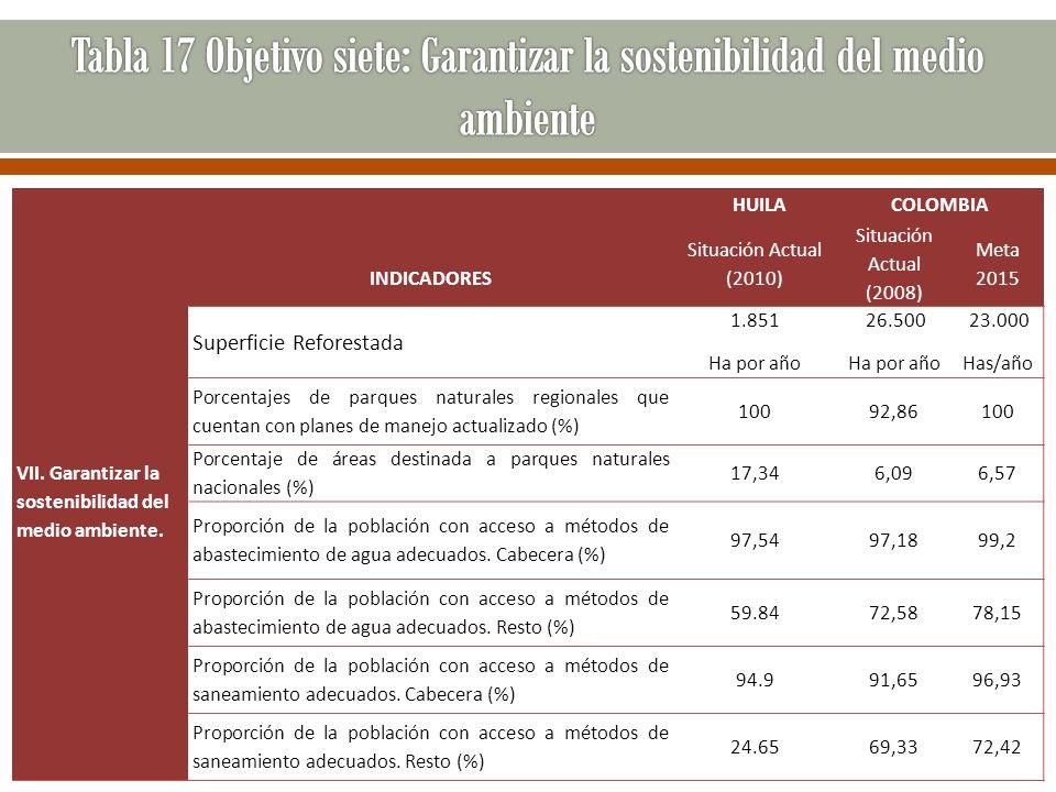 Tabla 17 Objetivo siete: Garantizar la sostenibilidad del medio ambiente