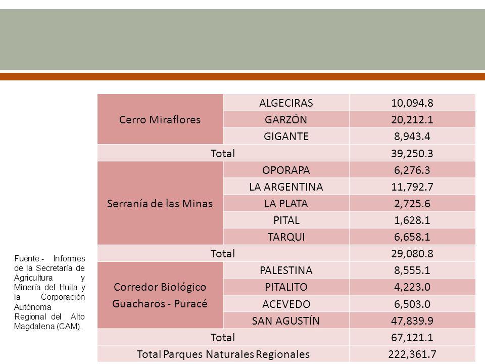 Corredor Biológico Guacharos - Puracé PALESTINA 8,555.1 PITALITO