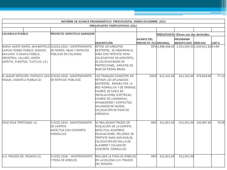 INFORME DE AVANCE PROGRAMÁTICO PRESUPUESTAL ENERO-DICIEMBRE 2012