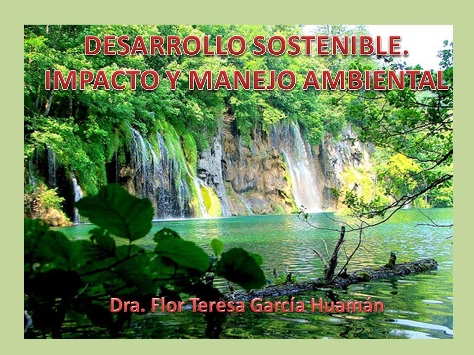 DESARROLLO SOSTENIBLE. IMPACTO Y MANEJO AMBIENTAL