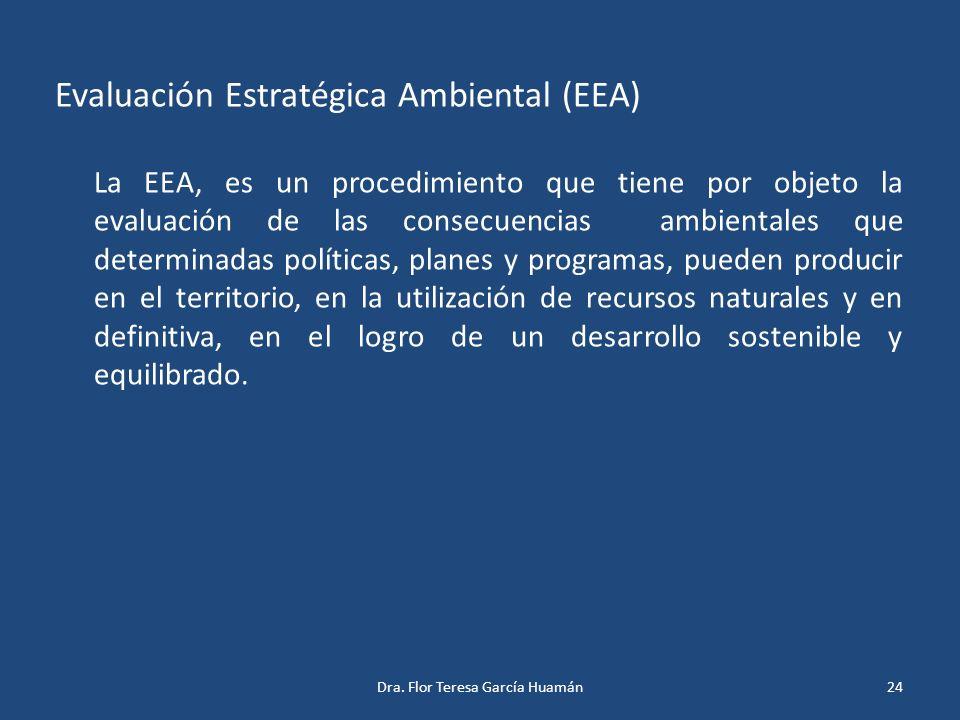 Evaluación Estratégica Ambiental (EEA)