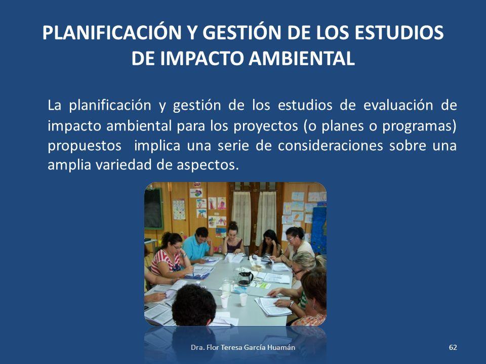 PLANIFICACIÓN Y GESTIÓN DE LOS ESTUDIOS DE IMPACTO AMBIENTAL