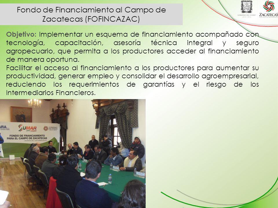 Fondo de Financiamiento al Campo de Zacatecas (FOFINCAZAC)