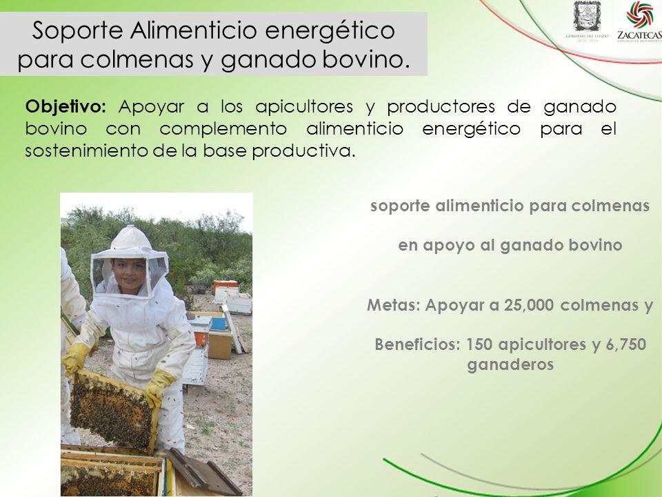 Soporte Alimenticio energético para colmenas y ganado bovino.