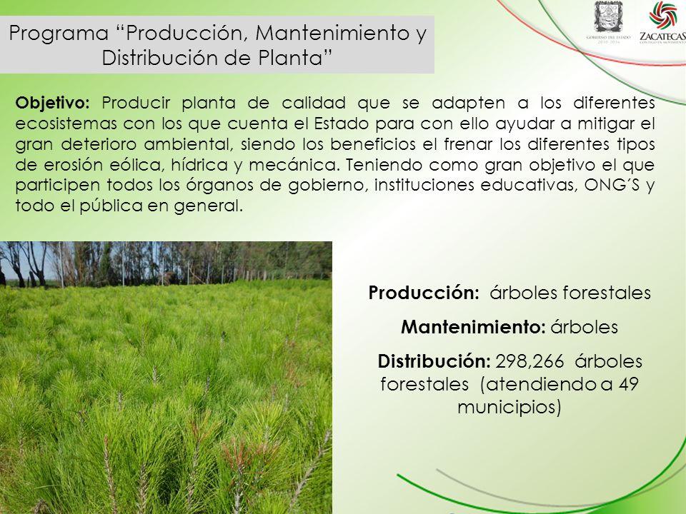 Programa Producción, Mantenimiento y Distribución de Planta