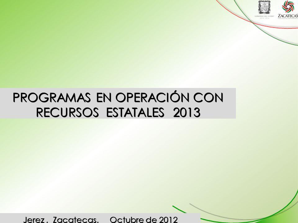 PROGRAMAS EN OPERACIÓN CON RECURSOS ESTATALES 2013