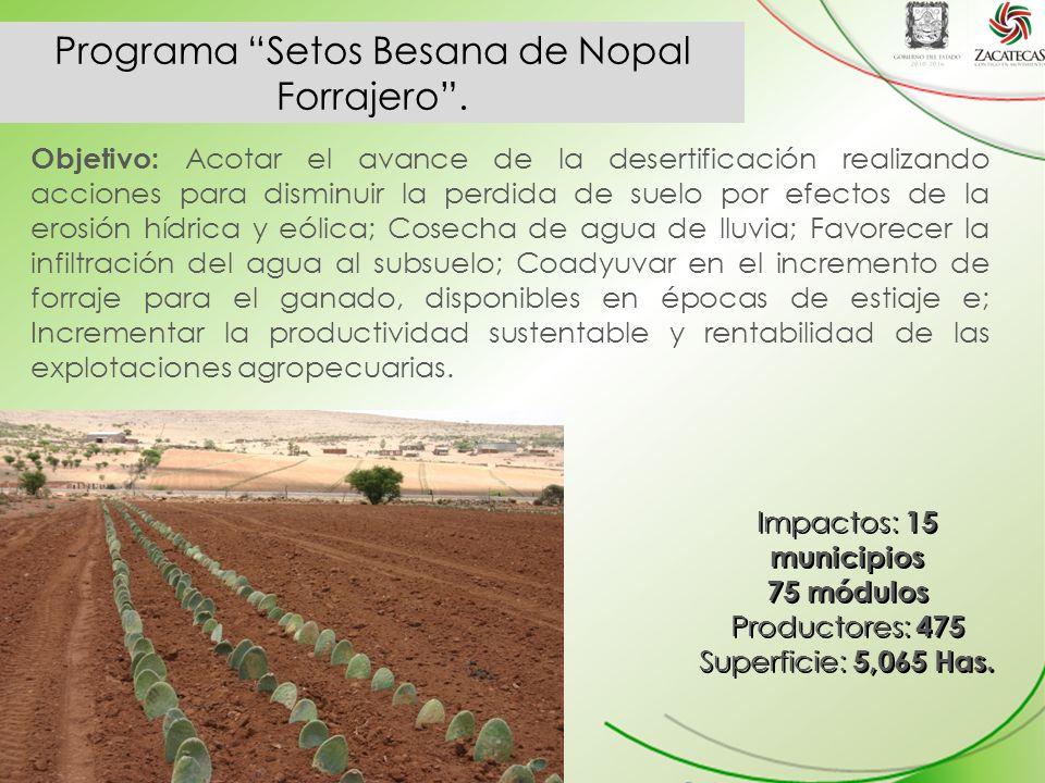 Programa Setos Besana de Nopal Forrajero .