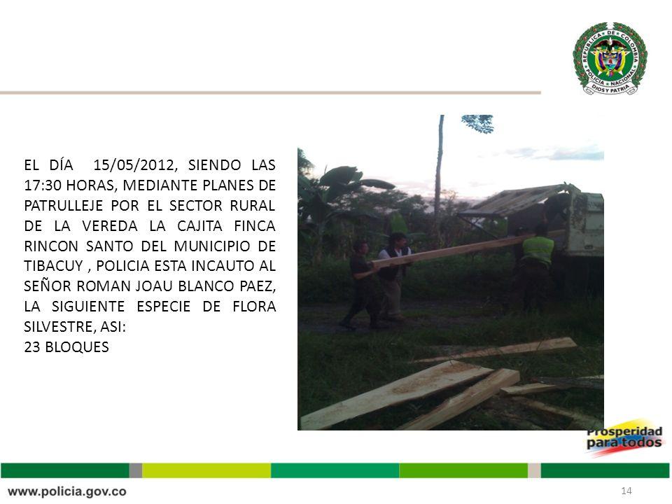 EL DÍA 15/05/2012, SIENDO LAS 17:30 HORAS, MEDIANTE PLANES DE PATRULLEJE POR EL SECTOR RURAL DE LA VEREDA LA CAJITA FINCA RINCON SANTO DEL MUNICIPIO DE TIBACUY , POLICIA ESTA INCAUTO AL SEÑOR ROMAN JOAU BLANCO PAEZ, LA SIGUIENTE ESPECIE DE FLORA SILVESTRE, ASI: