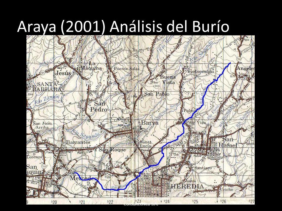 Araya (2001) Análisis del Burío