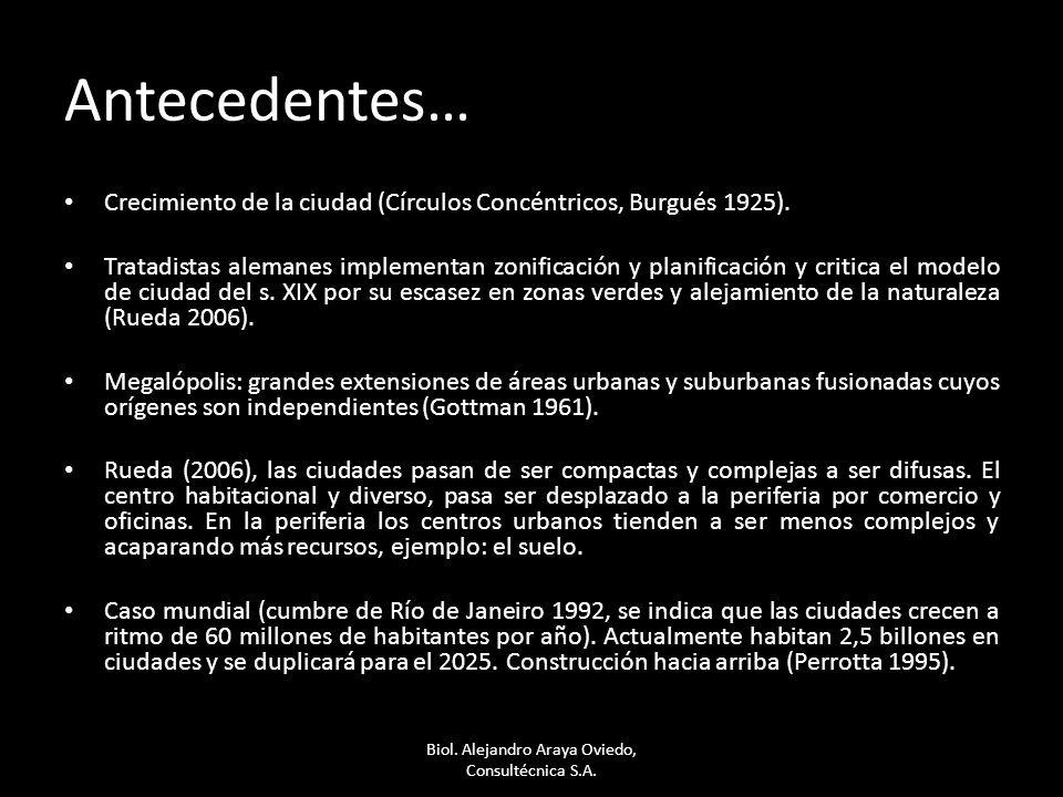 Biol. Alejandro Araya Oviedo, Consultécnica S.A.