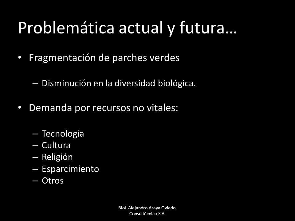 Problemática actual y futura…