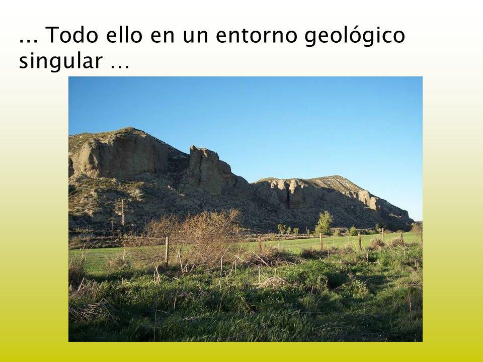 ... Todo ello en un entorno geológico singular …