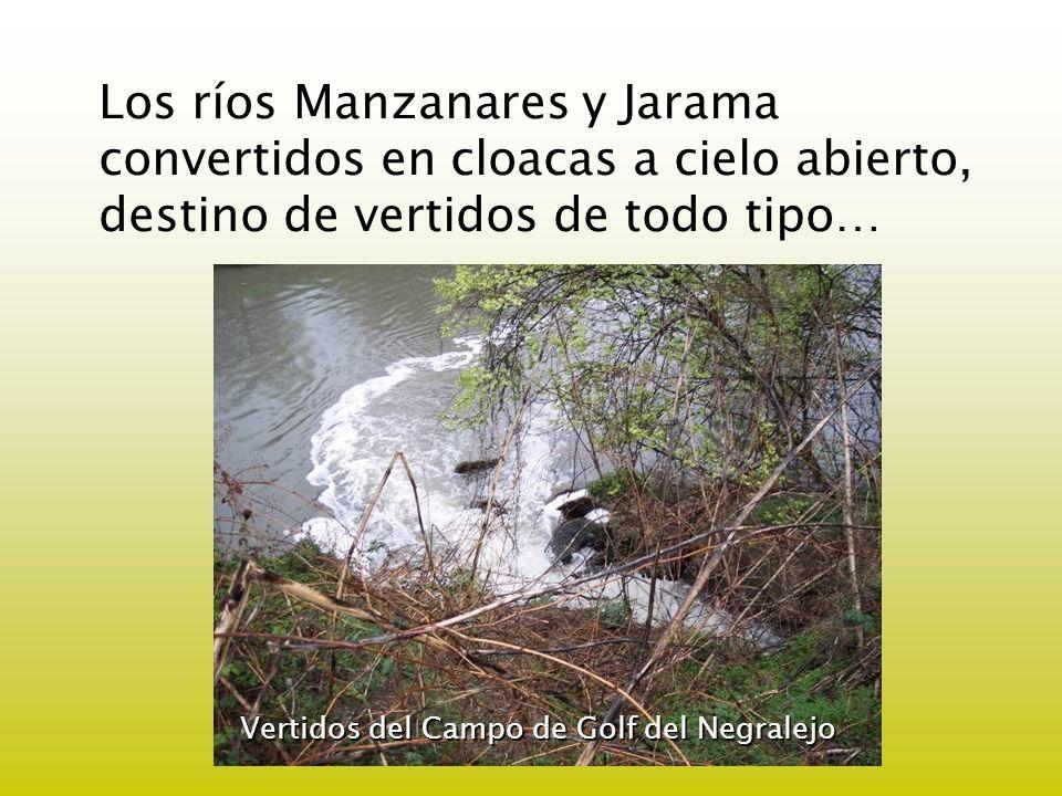 Los ríos Manzanares y Jarama convertidos en cloacas a cielo abierto, destino de vertidos de todo tipo…