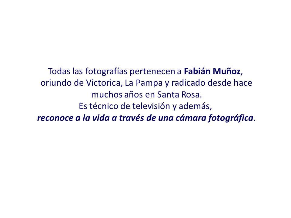 Todas las fotografías pertenecen a Fabián Muñoz,