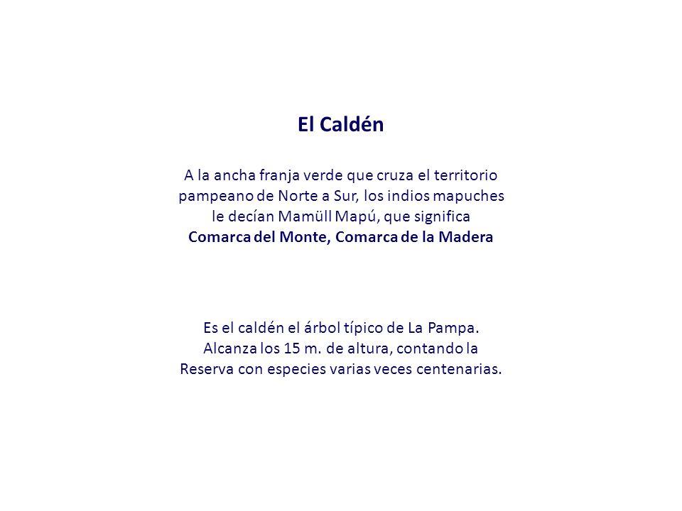 Comarca del Monte, Comarca de la Madera