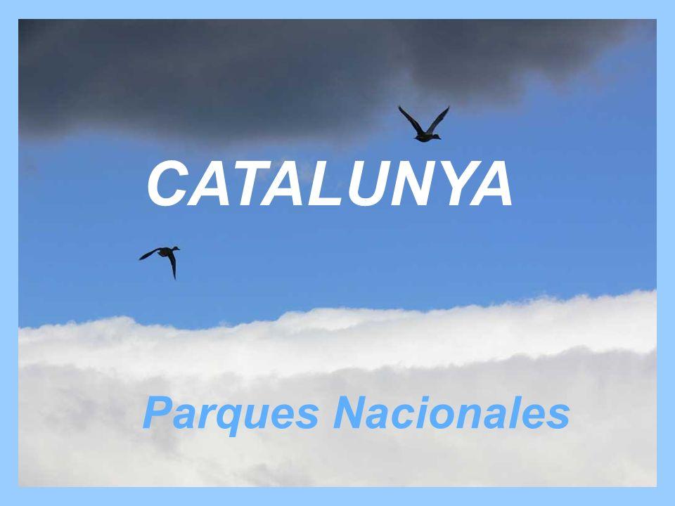 CATALUNYA Parques Nacionales
