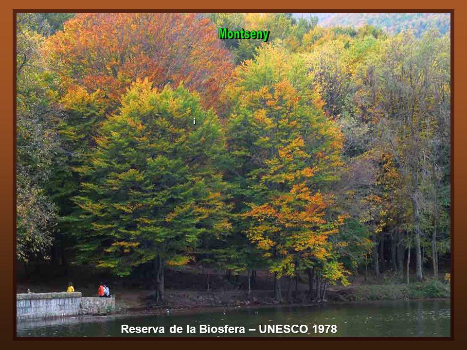 Reserva de la Biosfera – UNESCO 1978