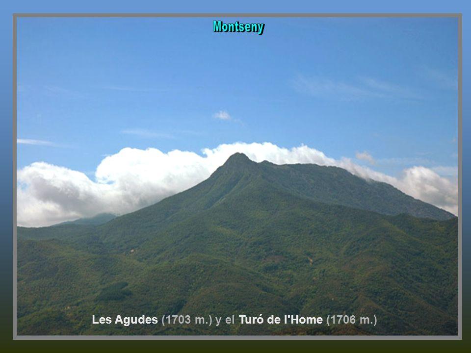 Les Agudes (1703 m.) y el Turó de l Home (1706 m.)