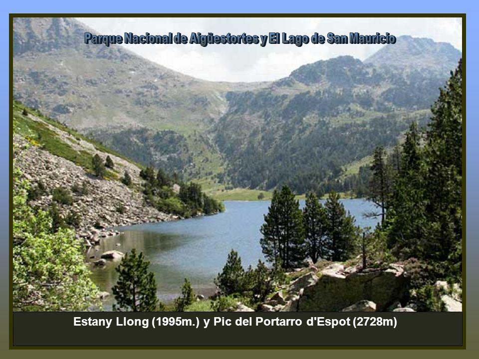 Estany Llong (1995m.) y Pic del Portarro d Espot (2728m)