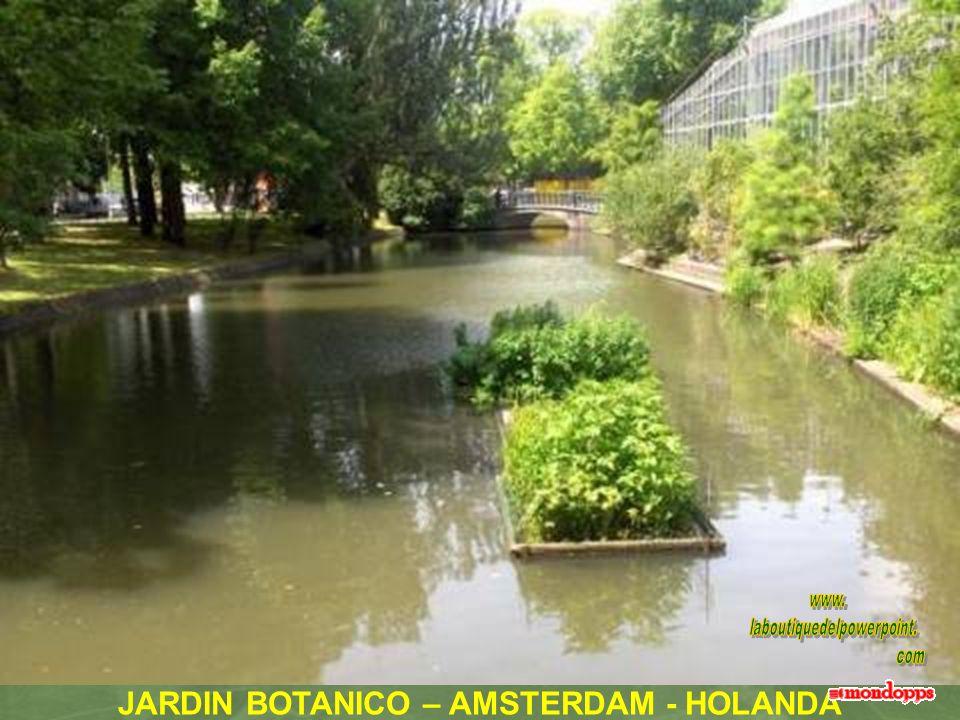 JARDIN BOTANICO – AMSTERDAM - HOLANDA