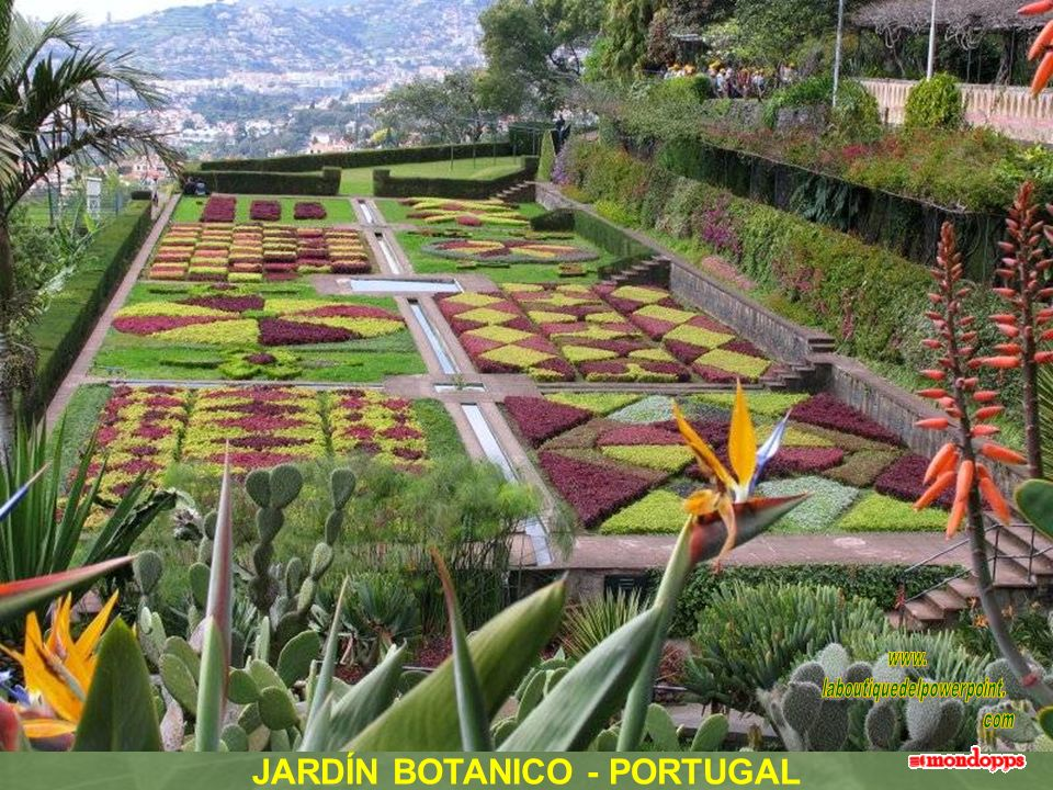 JARDÍN BOTANICO - PORTUGAL